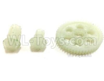 SG 1602 Spur Gear+Drive Pinions-M16020