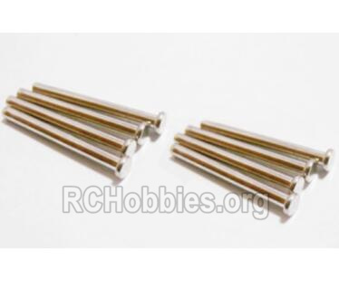 HBX 2128 Wildrider Parts-Pin Parts-Suspension Pins(2x21.8mm)-8pcs Parts-25015