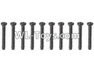 Hosim 9125 Parts screws-Pan head Cross recessed screws(10PCS)-2.3×16PBHO Parts-LS08,Hosim 9125 RC Car Parts