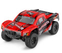 Wltoys A313 RC Car,Wltoys RC Truck Crawler Racing Car